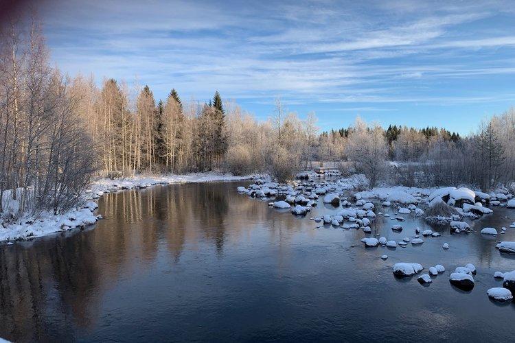 kuva talvisesta Tainionvirrasta